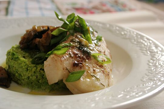 Halibut Fillet in Fresh Herbs on Fresh Peas and Soy Beans Puree
